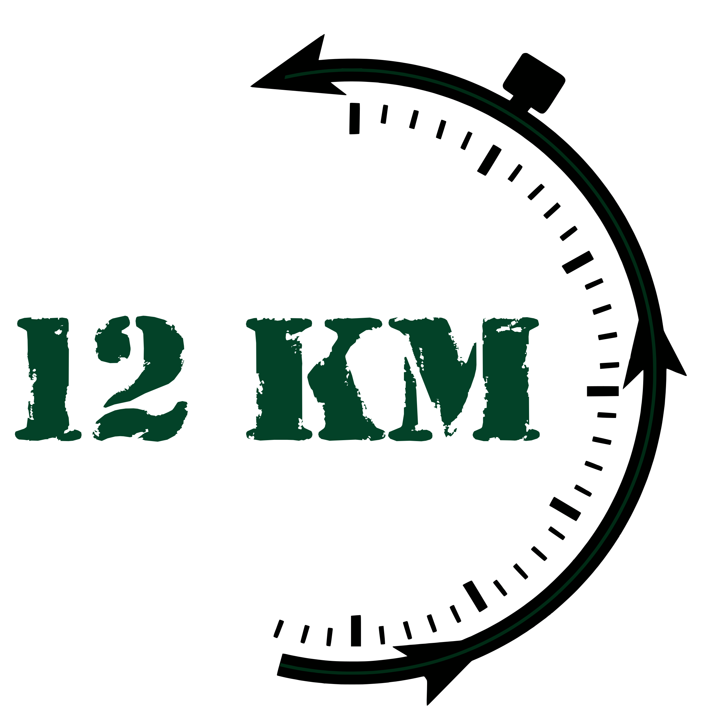 LOGO 12kms cercle